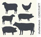 farm animals vintage set....   Shutterstock .eps vector #1250151877