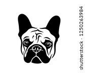 french bulldog   frenchie logo  ... | Shutterstock .eps vector #1250263984