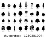 the collection of trees... | Shutterstock .eps vector #1250301004