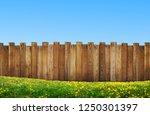 beautiful backyard with wooden... | Shutterstock . vector #1250301397