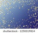 star shining gold gradient... | Shutterstock .eps vector #1250319814