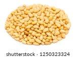 handful of peeled pine nut... | Shutterstock . vector #1250323324