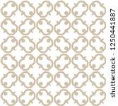 geometric ornamental vector... | Shutterstock .eps vector #1250441887