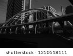 black and white | Shutterstock . vector #1250518111