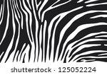 Zebra Skin Background  Animal...