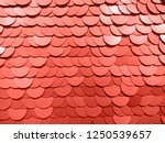 trend photography on the theme... | Shutterstock . vector #1250539657
