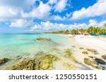 riviera maya   paradise beach... | Shutterstock . vector #1250550151