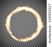 circus ring or hoop on fire.... | Shutterstock .eps vector #1250552317