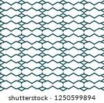 seamless vector pattern.... | Shutterstock .eps vector #1250599894