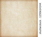 old paper texture. vintage... | Shutterstock . vector #1250614144