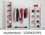 wardrobe shelves with different ... | Shutterstock . vector #1250631391