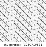 vector seamless pattern....   Shutterstock .eps vector #1250719531
