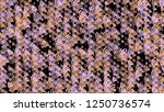 background of multi colored... | Shutterstock . vector #1250736574