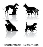 Stock vector vet pet icons symbols set eps vector grouped for easy editing no open shapes or paths 125074685