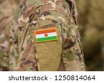 flag of niger on soldiers arm.... | Shutterstock . vector #1250814064