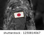 flag of japan on soldiers arm.... | Shutterstock . vector #1250814067
