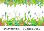 vivid line horizontal floral...   Shutterstock .eps vector #1250816467