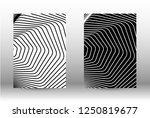 optical contrast. set of... | Shutterstock .eps vector #1250819677