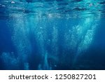 air bubbles underwater rising... | Shutterstock . vector #1250827201