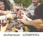 group of people drinking wine... | Shutterstock . vector #1250895451