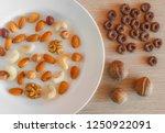 almonds  hazelnuts  walnuts ... | Shutterstock . vector #1250922091