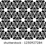 black and white seamless... | Shutterstock .eps vector #1250927284