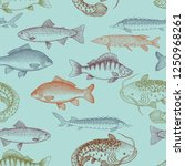 edible fishes on blue... | Shutterstock .eps vector #1250968261