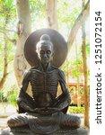 buddha statues suffering six... | Shutterstock . vector #1251072154