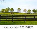 horse farm in kentucky's horse... | Shutterstock . vector #125108795