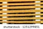 beautiful and original texture. ... | Shutterstock . vector #1251299851