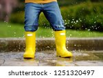toddler jumping in pool of... | Shutterstock . vector #1251320497