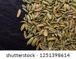 essential oil of fennel seeds... | Shutterstock . vector #1251398614