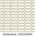 geometric ornamental vector... | Shutterstock .eps vector #1251419644