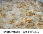 fried chicken is delicious in... | Shutterstock . vector #1251498817