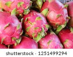 fresh dragon fruit organic in... | Shutterstock . vector #1251499294