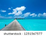 tropical beach in maldives with ... | Shutterstock . vector #1251567577
