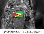 flag of guyana on soldier arm.... | Shutterstock . vector #1251604534