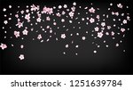 nice sakura blossom isolated... | Shutterstock .eps vector #1251639784