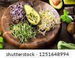 assortment of micro greens.... | Shutterstock . vector #1251648994
