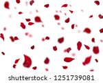 Stock photo rose petals stock image 1251739081