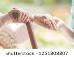 closeup of senior lady holding... | Shutterstock . vector #1251808807