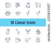 zoo icon set and camel with...   Shutterstock .eps vector #1251815107
