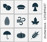 seasonal icons set with apple... | Shutterstock .eps vector #1251895657