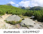 old stones in mountains  tatras ... | Shutterstock . vector #1251999427