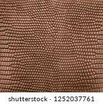 brown lizard skin pattern... | Shutterstock . vector #1252037761