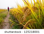 waling in the country road with ... | Shutterstock . vector #125218001