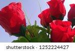 valentine's love rose | Shutterstock . vector #1252224427
