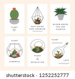 a set of terrarium plants cards.... | Shutterstock .eps vector #1252252777