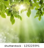 spring or summer season... | Shutterstock . vector #125225591