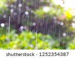 rain  season of precipitation.... | Shutterstock . vector #1252354387
